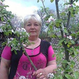 галина, 63 года, Радомышль