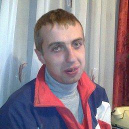 Александр, 35 лет, Олевск