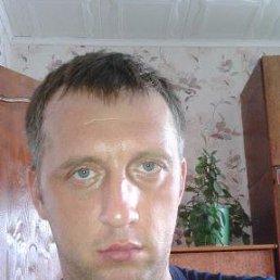алексей, 34 года, Козловка