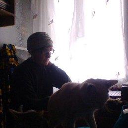 людмила, 58 лет, Барыш