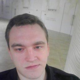 Роман, 28 лет, Киреевск