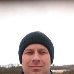 Viktor, 37 лет, Обливская
