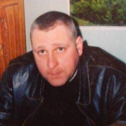 Андрей, 35 лет, Волчанск