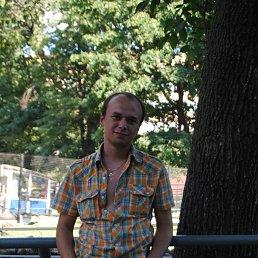 Александр, 32 года, Щелково