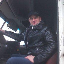 Александр, 42 года, Донской