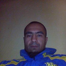 Ahmed, 34 года, Смолино