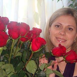 Мусяндра, 41 год, Внуково