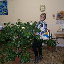 Алифтинка *Очарование*, Кировоград - фото 3