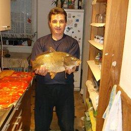 Ivan, 51 год, Хуст
