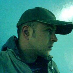 Сергей, 19 лет, Волоконовка