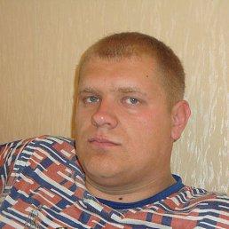 НИКОЛАЙ, 32 года, Родино