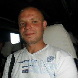 владимир, 30 лет, Михайловка