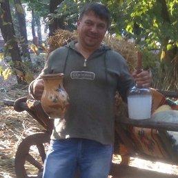 Александр, 46 лет, Кировоград