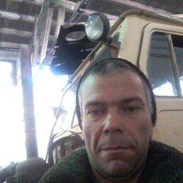 alexey, 37 лет, Бурла