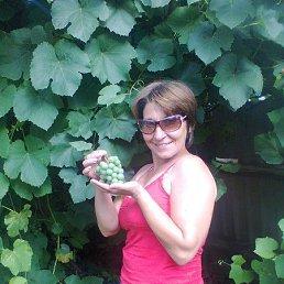 Нина, 41 год, Белгород