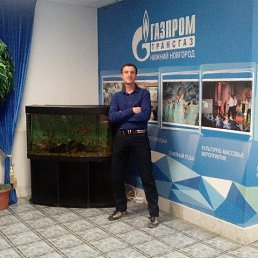 Николай, 33 года, Торбеево