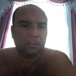 Андрей, 40 лет, Балта