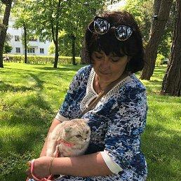 жана, 54 года, Крымск