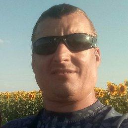 Sergey, 43 года, Рени
