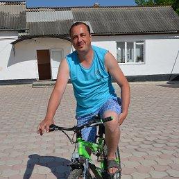 Andrei, 43 года, Сокиряны
