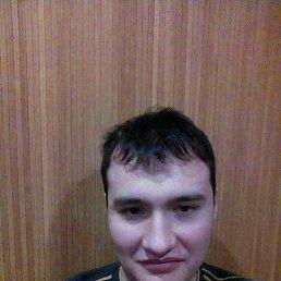 Александр, 27 лет, Свердловск