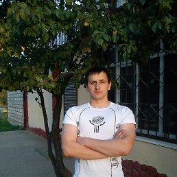 Николай, 29 лет, Верхнеднепровский