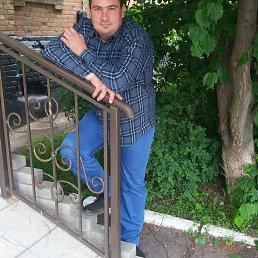 Александр, 35 лет, Покровское
