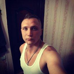 Николай, 25 лет, Зеленоградский