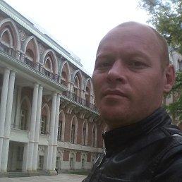 Варанкин, 40 лет, Москва