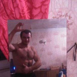 Андрей, 29 лет, Заводоуковск