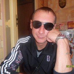 Сергей, 40 лет, Орловский