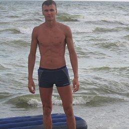 Тосик, 29 лет, Терновка