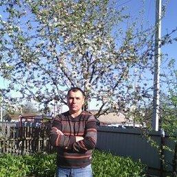 Владимир, 44 года, Долинская