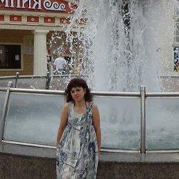светлана, 53 года, Снежинск