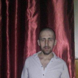 Саня, 35 лет, Пущино