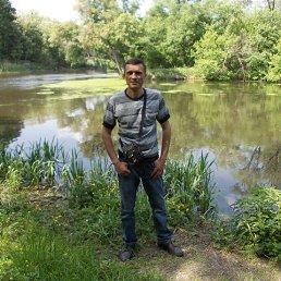 Анатолий, 41 год, Дергачи