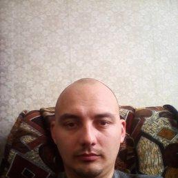 Артем, 33 года, Сватово