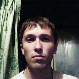 Андрей, 27 лет, Стаханов