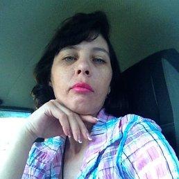 Елена, 41 год, Мотыгино