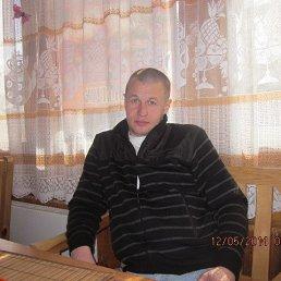 Алексей, 42 года, Семибратово