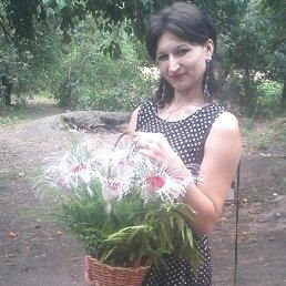 Алиса, 26 лет, Полтава