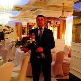 Андрей, 59 лет, Иваново