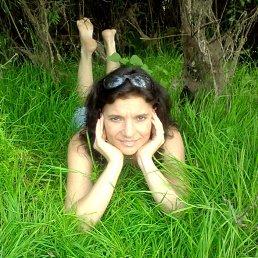 Lyudmila, 42 года, Новгород-Северский