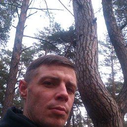 Dmitriy, 32 года, Черкассы