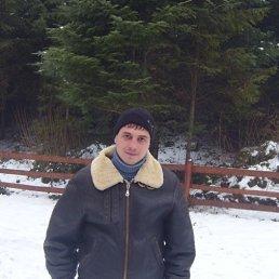 владимир, 30 лет, Теребовля
