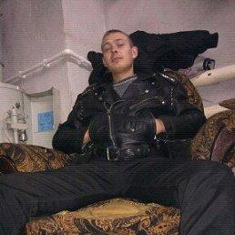 Николай, 27 лет, Шацк