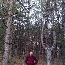 евгений, 38 лет, Пологи