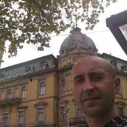 Sergiy, 42 года, Хмельник