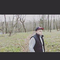 Даниил, 18 лет, Богородицк