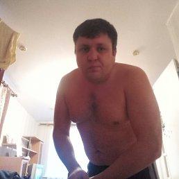 Сергей, 35 лет, Павловская Слобода